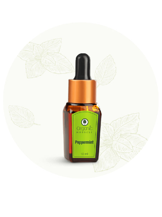 (Organic Harvest) Pepper Mint Essential Oil (10ml)