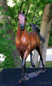 """ W H Justice "" Arabian Stallion Bronze Sculpture."
