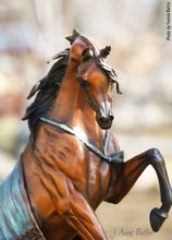 "Load image into Gallery viewer, "" The Legend"" Bronze Arabian Horse Sculpture"
