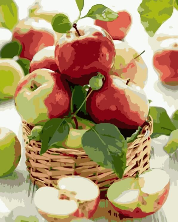 Apples Basket Paint by Numbers Kit - All Paint by numbers