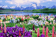 Load image into Gallery viewer, Colors of Spring DIY Painting Kit
