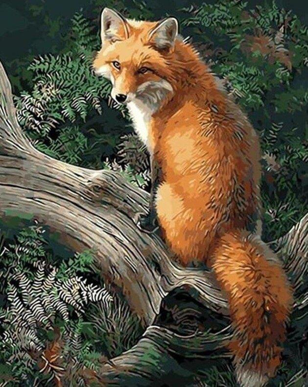 Fox in the Forest Painting Kit - All Paint by Numbers