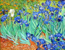 Load image into Gallery viewer, Irises Paint by Numbers