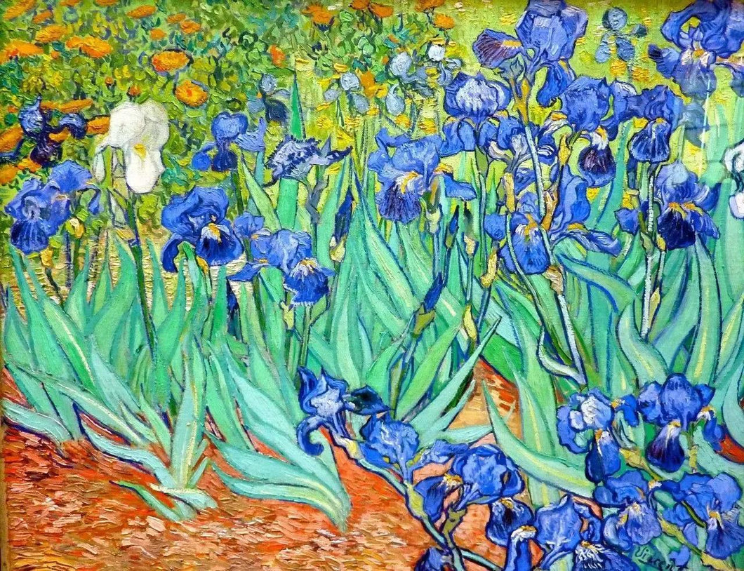 Irises Paint by Numbers