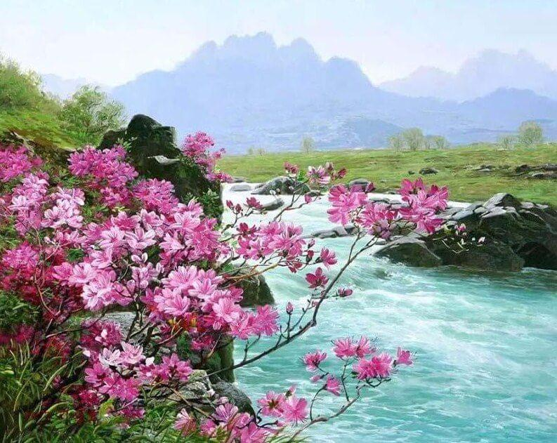 Pink Flowers by the River