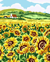 Load image into Gallery viewer, Field of sunflowers on a farm.