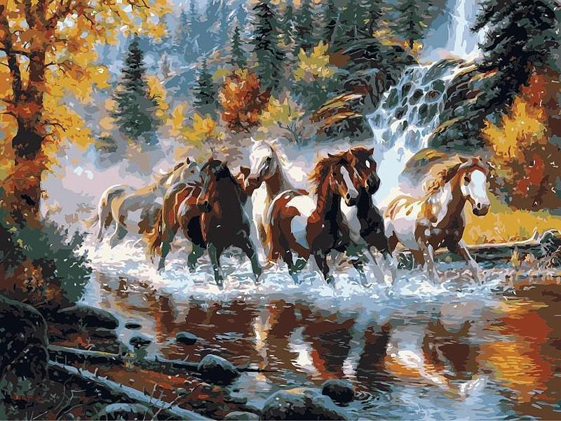 Horses Running in the River Painting DIY with Painting KIT - All Paint by numbers