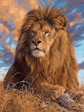 Load image into Gallery viewer, Lion Paint by numbers kit for Adults