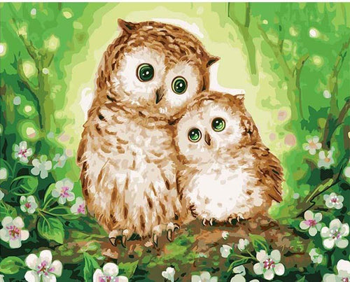 cute owl paint by numbers