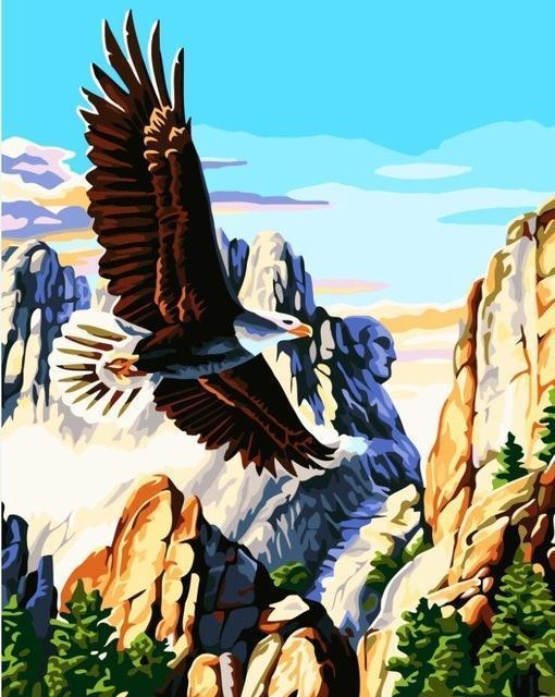 Flying Eagle Paint by Numbers - Eagle in the Rocky Mountains - All Paint by numbers