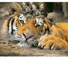 Load image into Gallery viewer, Kittens on the Tiger Painting - All Paint by numbers