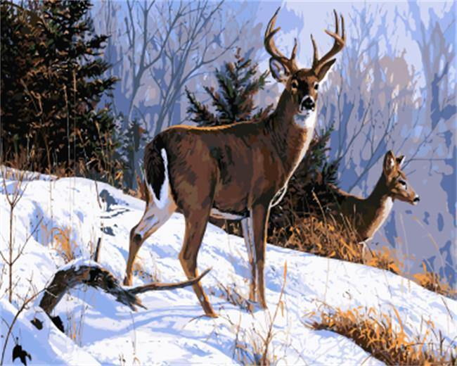 Deer on Snow - All Paint by Numbers