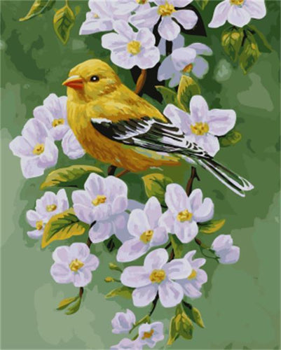 A Sparrow on White Lilly - All Paint by numbers