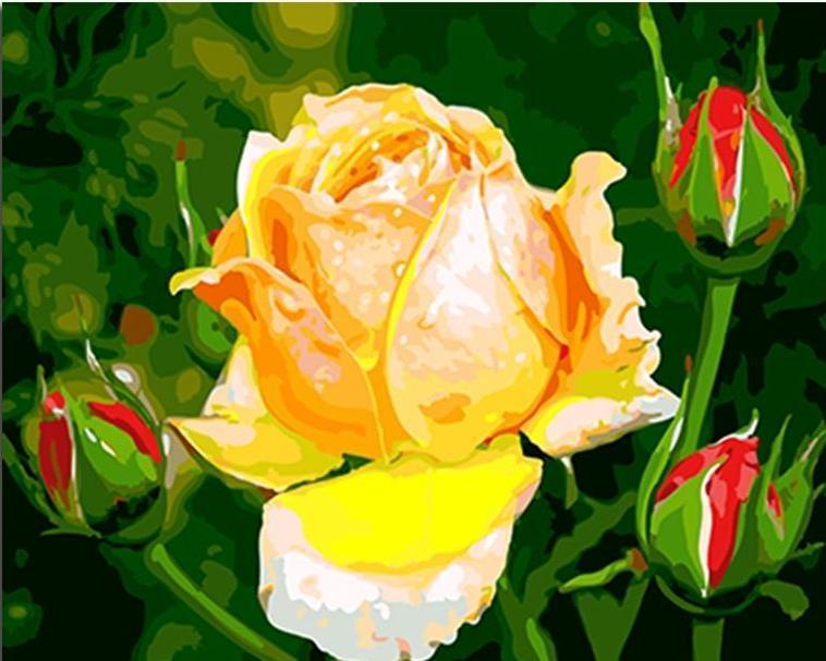 Yellow Rose & Red Rose Buds - All Paint by numbers