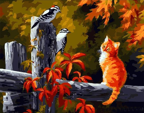cat and birds adult diy painting