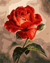 Load image into Gallery viewer, A Blooming Red Rose - All Paint by numbers