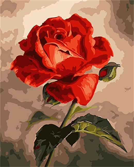 A Blooming Red Rose - All Paint by numbers