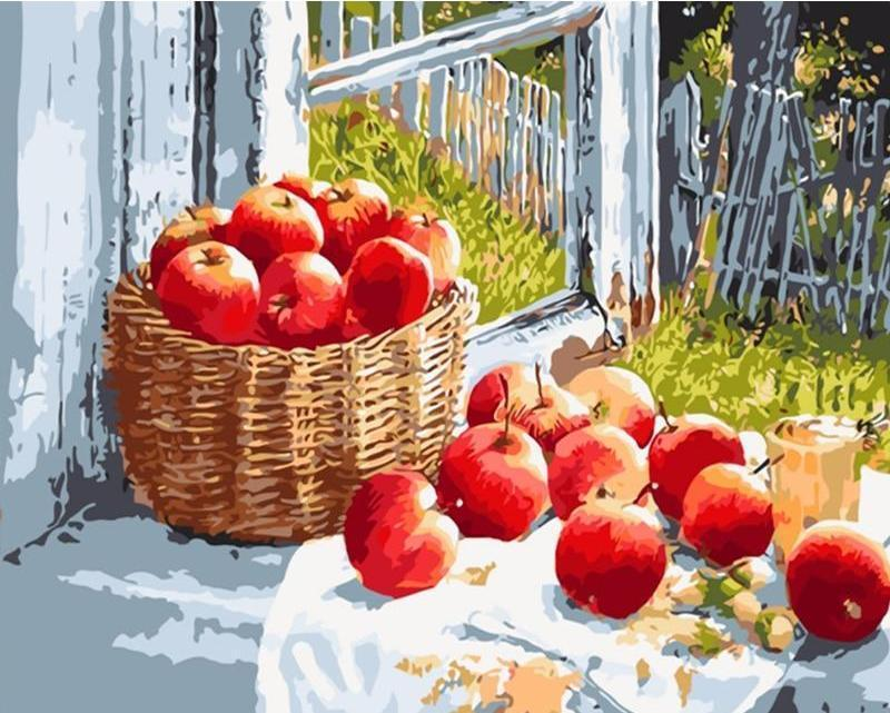 basket of apples diy paint by number