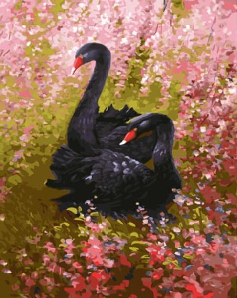 A Pair of Black ducks - All Paint by numbers