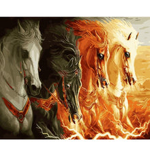 Load image into Gallery viewer, A Collection of Horses - All Paint by numbers