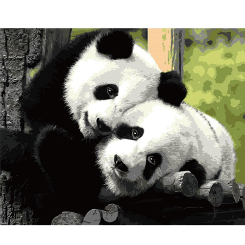 A Pair of Panda - All Paint by numbers