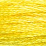 DMC 0307 Cotton 6 Strand Floss