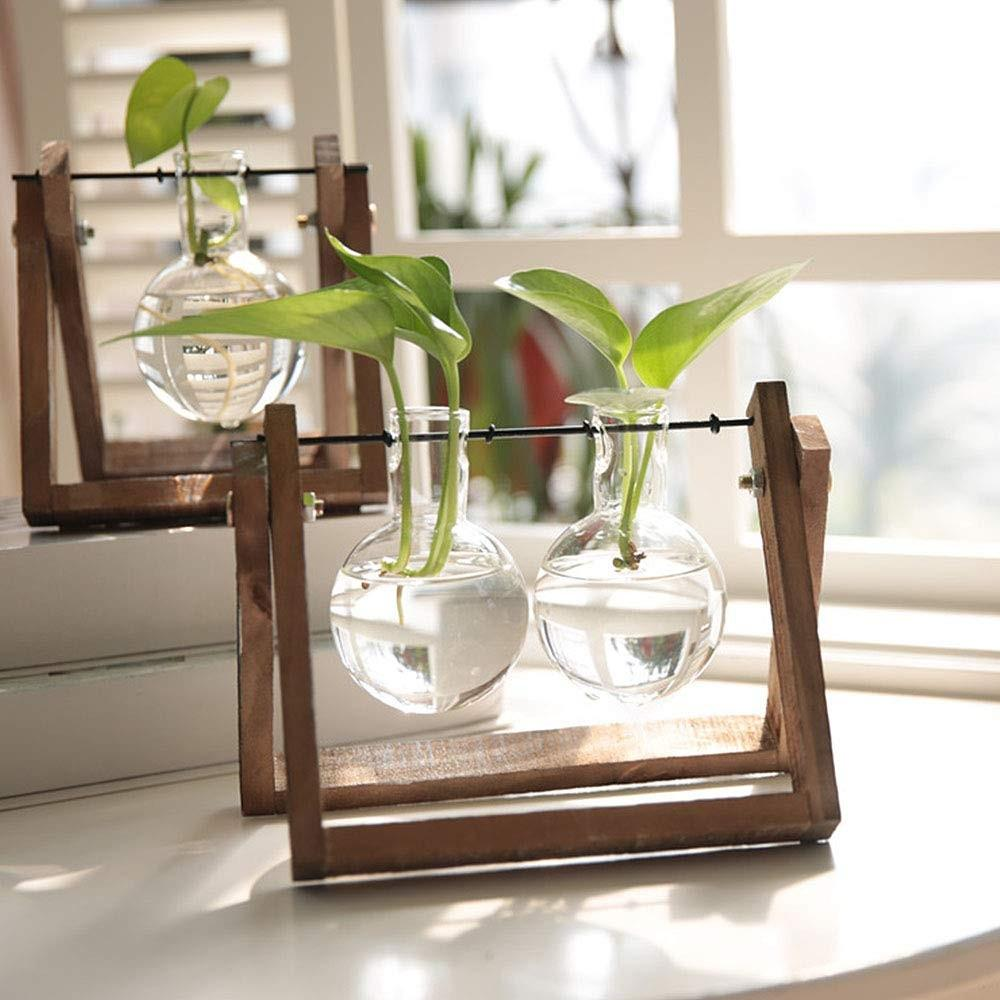 Glass Planter Bulb Vase Set