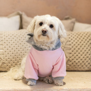 Limited Edition Varsity Dog Hoodie - Pink