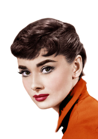 Audrey Hepburn eye brows eyebrow makeup by anastasia beverly hill brow wiz