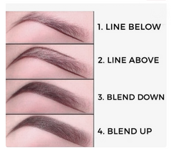 Beautiful brow basics a complete guide to perfect brows dollup beauty eyebrow natural diagram brow shapes ccuart Gallery