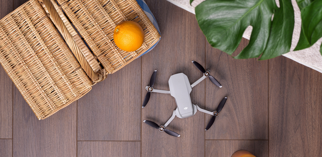 DJI has launched the Mini 2 drone.