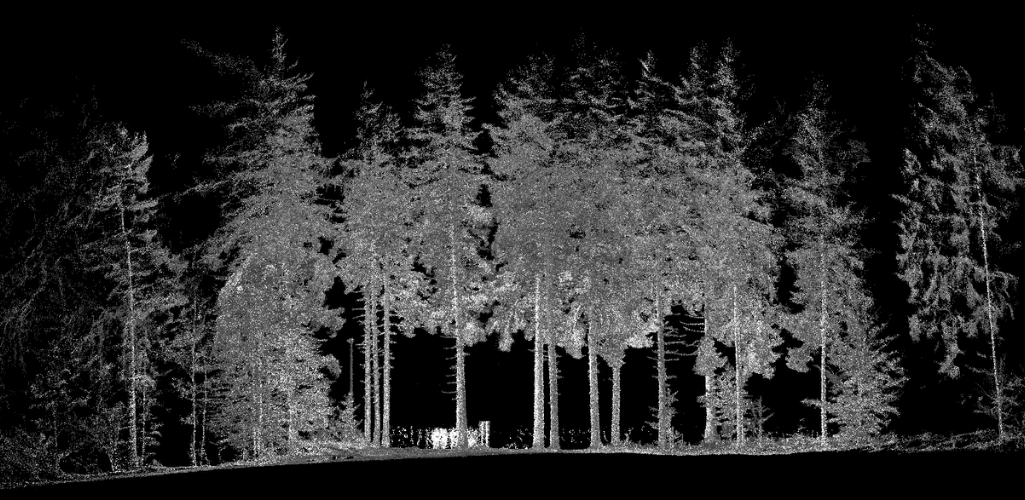 LiDAR is useful for forestry.
