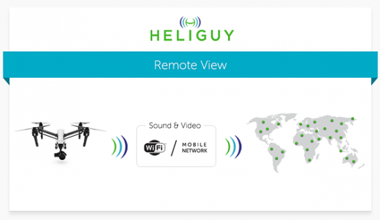 Heliguy Remote View