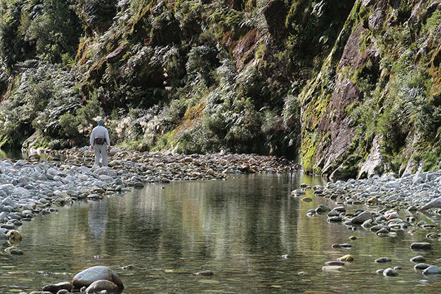 Gin Clear Fly FIshing Water New Zealand