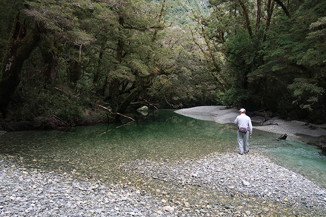 Perfect Trout Water New Zealand