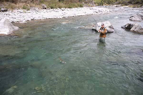 HURANUI RIVER CZECH NYMPHING, EXPERTS, SOUTH ISLAND NEW ZEALAND BROWN TROUT