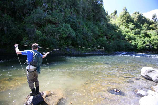 fly casting new zealand casting instructor trophy trout guides fishing