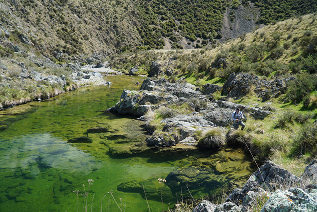 New Zealand Back Country Fly Fishing Tips