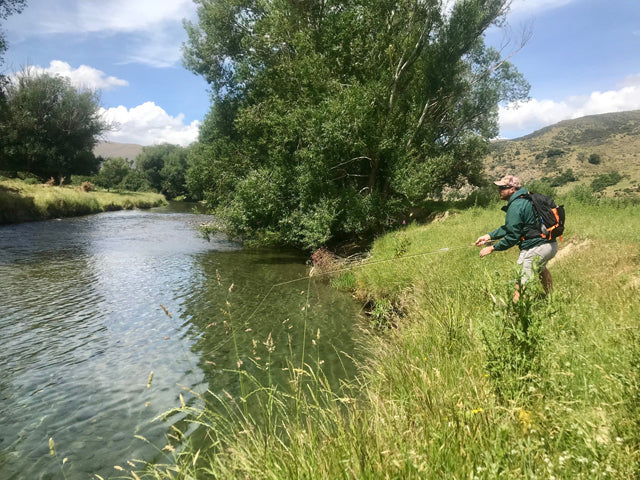 Chris Dore How To Fly Fish