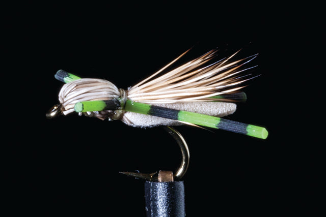 Manic Fly Collection Micro Hopper Green