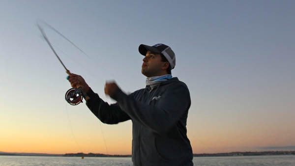 saltwater fly fishing in auckland, hauraki gulf fly fishing, king fish on a fly, snapper on fly rods,