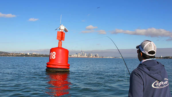 fly fishing in auckland, guiding, tours, charters, boats, fly fishing courses, learn to saltwater fly fish