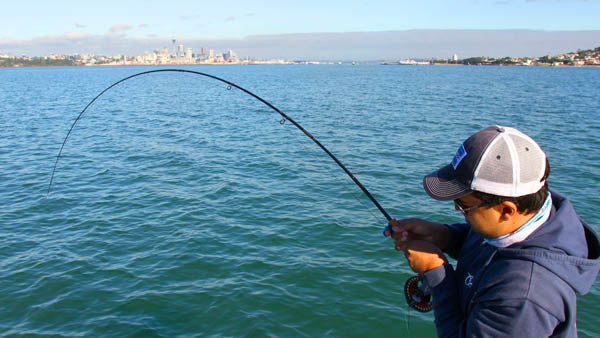 saltwater fly rods for new zealand, best saltwater fly fishing tackle, buying saltwater fly fishing gear