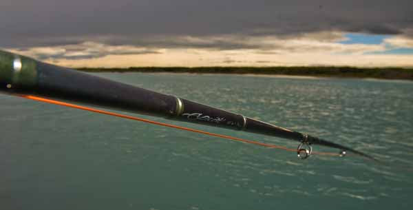 Spey rods two handed fly rod Scott T2H switch rods shooting heads, salmon sea run trout New Zealand
