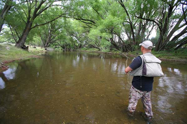 Simon Chu gently places a cast to a willow grub feeder on the Taeri