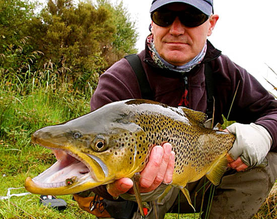 big brown trout in new zealand lakes, how to catch, best places to fish for brownies, access points to fisheries
