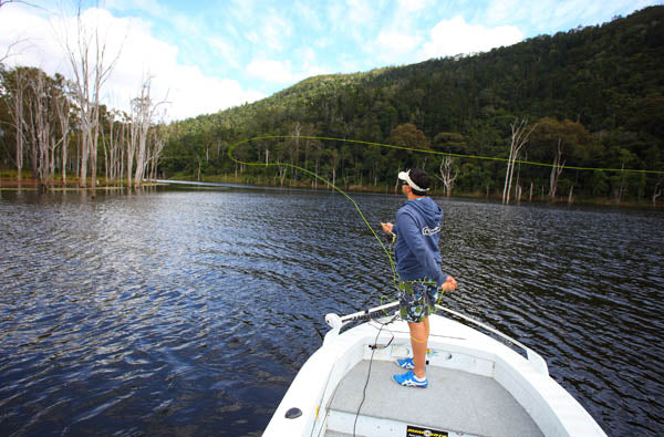 fly fishing for saratoga in queensland australia, how to catch saratoga on fly