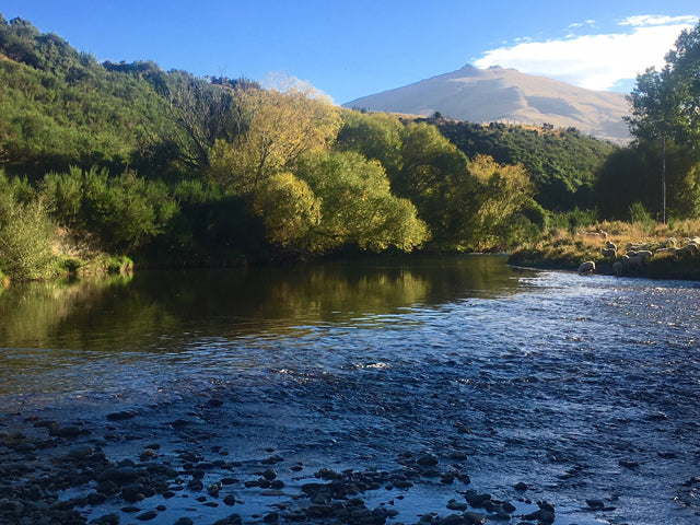 Chris Dore Fly Fishing Guide