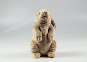 "9"" PLUSH PRAIRIE DOG"