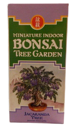 Image Bonsai Tree Garden Kits Jacaranda